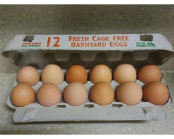 Eggs - Free Range Farm