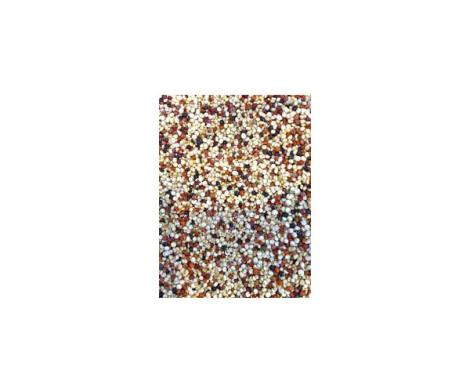 Quinoa Tri-colour Organic
